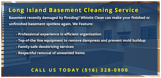Whistle Clean Basement Cleaning