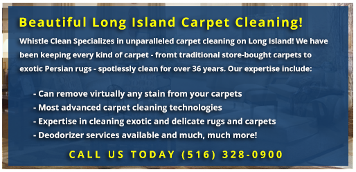 Whistle Clean Carpet Cleaning