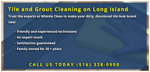Whistle Clean Tile & Grout Cleaning
