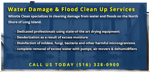 Whistle Clean Water Damage Cleaning