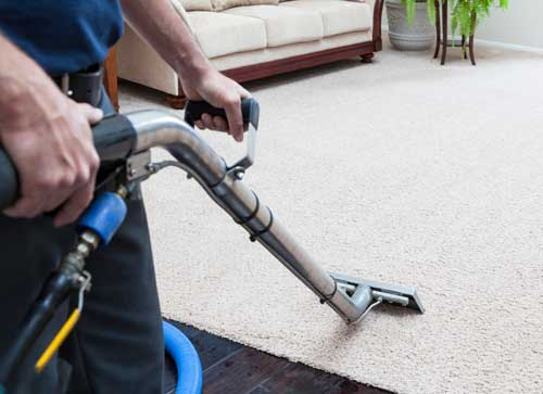 Whistle Clean Long Island Carpet Cleaning