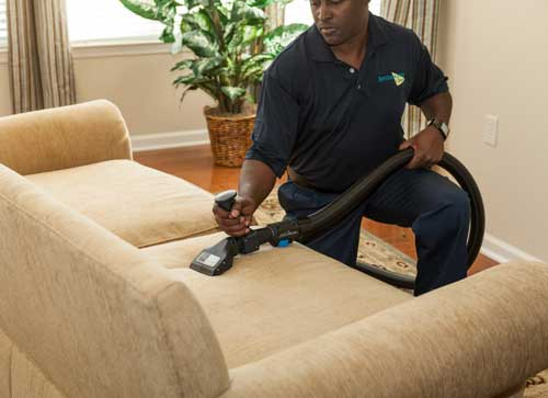 Whistle Clean Upholstery Cleaning