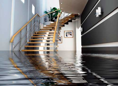 Whistle Clean Long Island Water Damage Cleaning